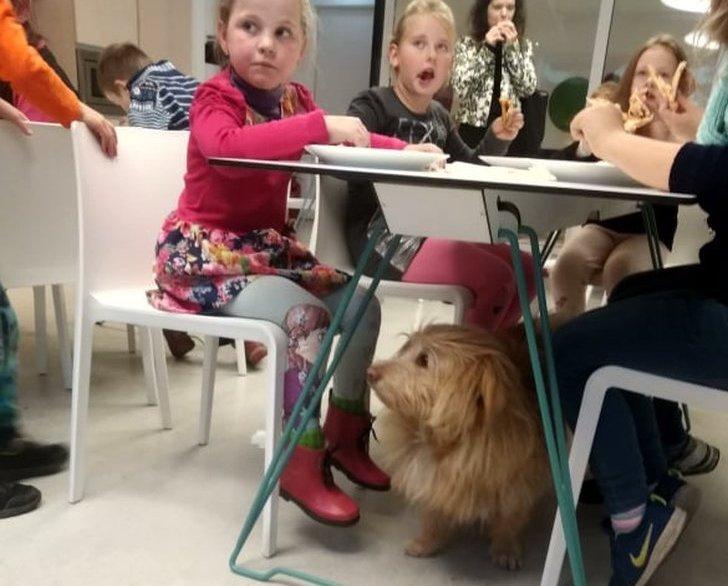 Bagaslaviškio dienos centro vaikai greitai susidraugavo su šuneliu.