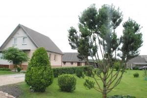 Daivos ir Jono Grygelevičių kieme auga įvairiausių rūšių ir formų medžių bei krūmų.