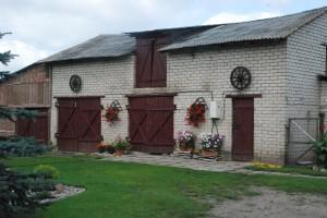 Jelenos ir Rimučio Lisauskų sodyboje net ūkinis pastatas papuoštas.