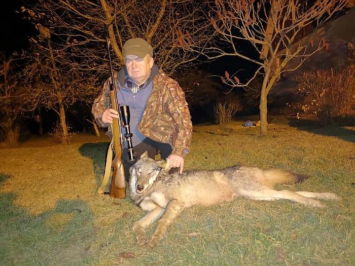 Hendrikas Adomavičius per savo medžiotojo karjerą nušovė jau trečią vilką.