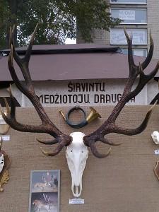 Hendriko Adomavičiaus trofėjus buvo eksponuojamas Rudens šventės metu, Širvintų medžiotojų draugijos stende.