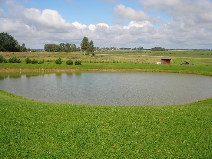 Nuo Plieskių tvenkinio kranto galima grožėtis Alionių I kaimo panorama.