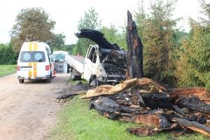 Po smūgio į medį kilo gaisras (gzeme.lt nuotr).