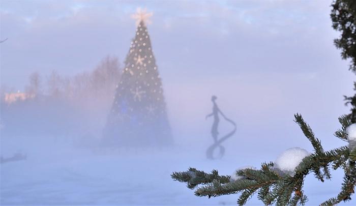 Širvintų miesto Kalėdų eglė.
