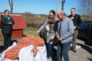 """""""Heifer Baltijos fondo"""" programų vadovė Inga Pranaitienė musninkiečiams perduoda sėklines bulves."""
