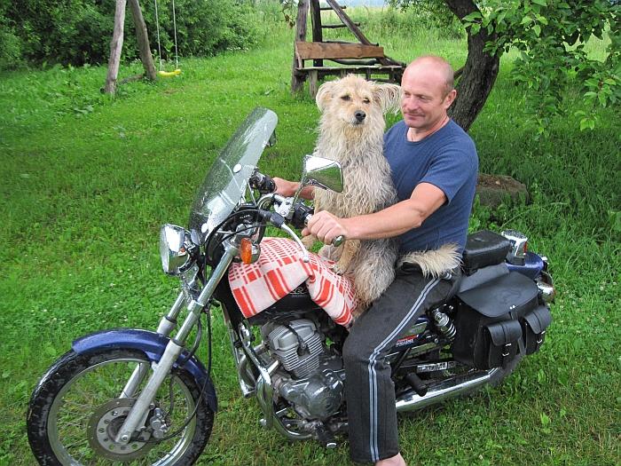 Česlovas Kanapienis pasakojo, kad jo šunys ne tik geri sargai, bet ir motociklu važinėjantys.