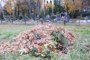 Anot seniūnų, tvarkant kapines dar trūksta pačių gyventojų geranoriškumo ir supratimo.