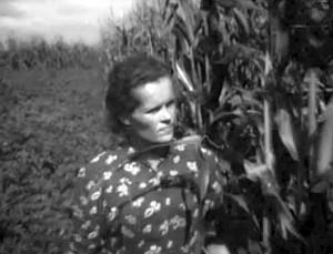 Zuzana Motiejūnienė prie jos auginamų kukurūzų. 1959 metai.