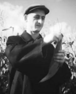 Alionių kolūkio pirmininkas Mykolas Filipavičius džiaugiasi puikiu kukurūzų derliumi. 1959 metai.