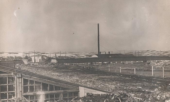 1958 metų gegužės 12 diena. Taip atrodė šiltnamis Vorkutoje, kuriame po tremties dirbo Zosia Kuzmienė.