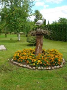 Stasės Pliukštienės, gyvenančios Vileikiškiuose, sodyboje daug gėlių.