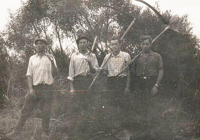 Vileikiškių kolūkio kolūkiečiai. 1965 m.