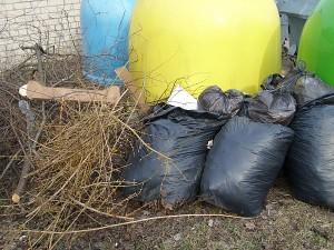 Kad širvintiškiai aktyviai tvarkosi aplinką, liudija ir prie buitinių atliekų konteinerių bei kitose vietose sukrautos šiukšlės. Gyventojai viliasi, kad jos bus greit išvežtos, antraip jų darbas nueis perniek.