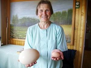 Janinos Vošterienės rankose - stručio ir vištos kiaušiniai. (Nuotrauka iš redakcijos archyvo)