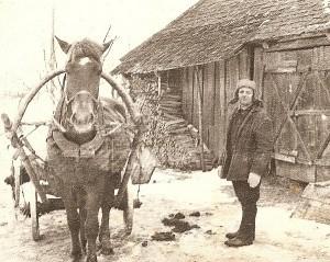 Didžiausias pagalbininkas kaimo darbuose būdavo arkliukas.