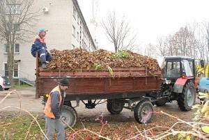 Kelionei į Ukmergės rajoną paruoštos žaliosios atliekos. Ten jos priimamos nemokamai.