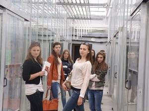 """Gegužės 16 dieną Gelvonų vidurinės mokyklos biologijos mokytojos iniciatyva galėjome apsilankyti Aleksandro Stulginskio universitete (ASU) organizuotoje paskaitoje """"Augalų žavadienis""""."""