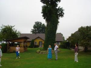 Reginos ir Mykolo Jasionių (Vazgūnai) sodybos puošmena - kieme žaliuojantis šimtametis ąžuolas.